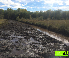Curage de fossés en zone marécageuse - SLAT Lafitte